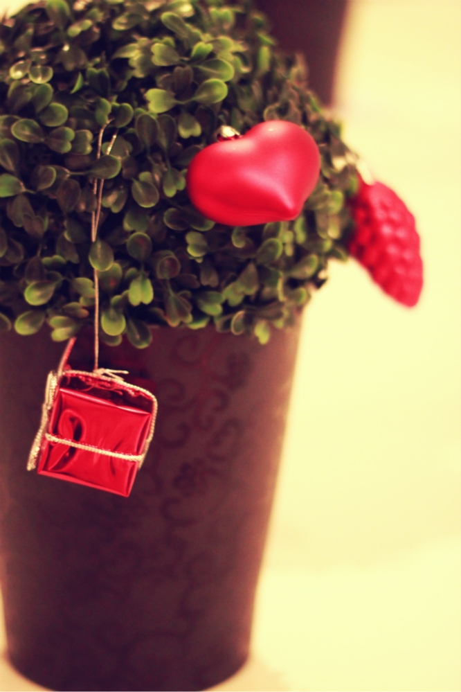 Very cute little tree and Christmas decorations. <3