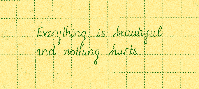 ❝Everything was beautiful and nothing hurt.❞ - Kurt Vonnegut Jr.