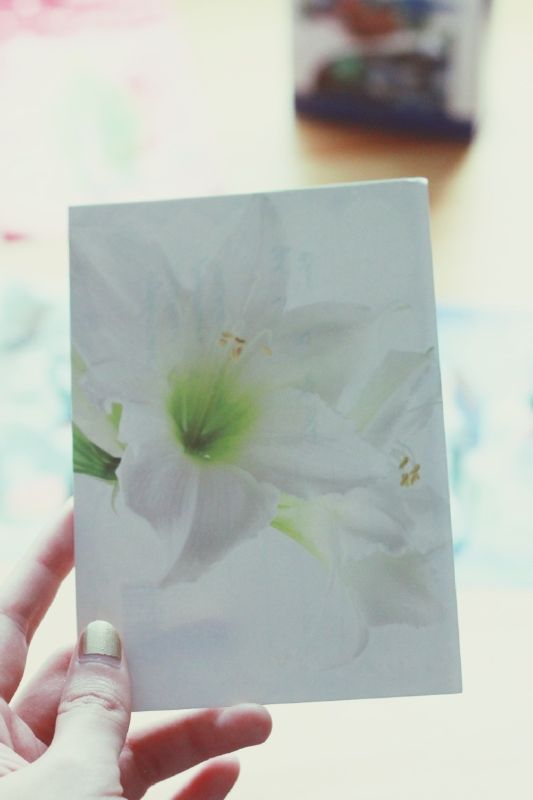 A card from a neighbor, delivered through letter hole on the door. White lily and green text. <3