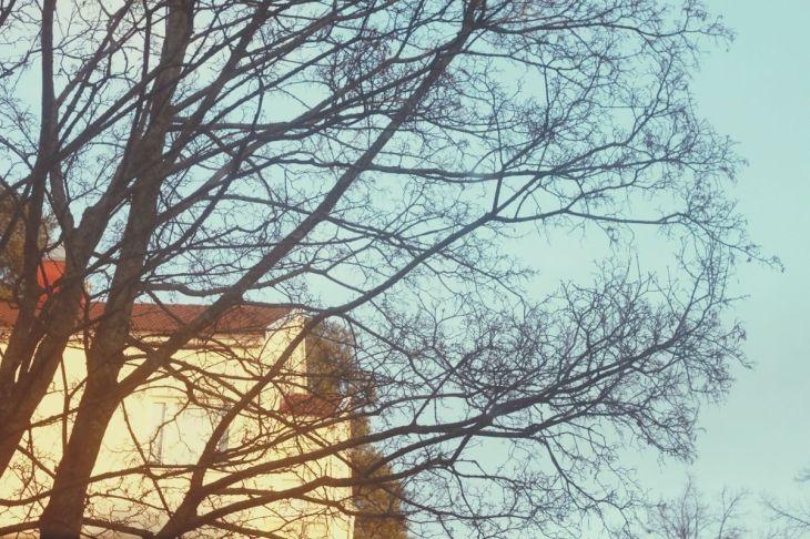 hiếm hoi có nắng và trời xanh.